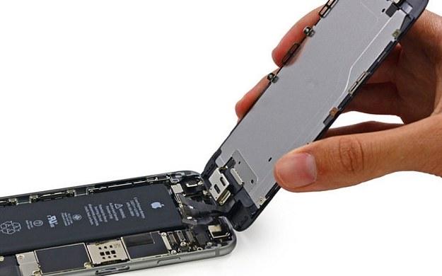 iPhone 6. Fot. iFixit /materiały prasowe