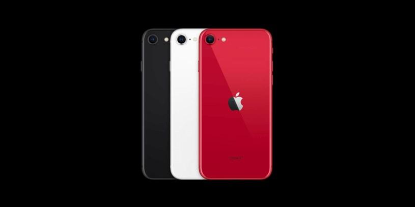 iPhone SE 2020 /materiały prasowe