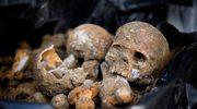 IPN wyjaśni tajemnicę zbiorowej mogiły w Malborku