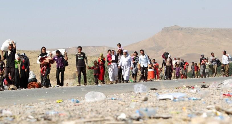 Irackie rodziny wysiedlone z terenów w pobliżu granicy iracko-syryjskiej / AHMAD AL-RUBAYE /AFP