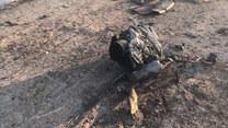 Iran: Katastrofa ukraińskiego samolotu. Nikt nie ocalał