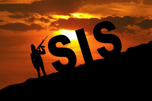 ISIS sporządza improwizowane ładunki wybuchowe na skalę półprzemysłową /123RF/PICSEL