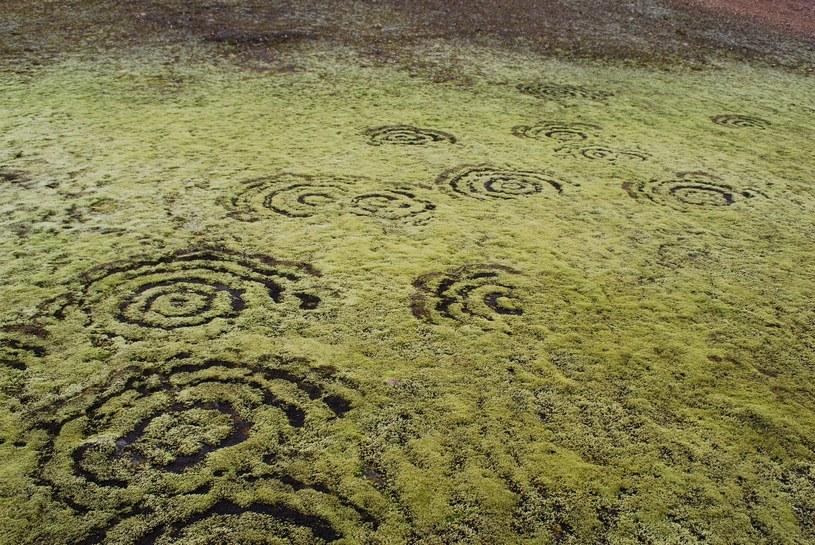 Islandia i czarcie koła. Fot. Chmee2/Valtameri /Wikipedia