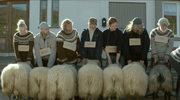 """""""Islandzka opowieść"""" ze Złotym Aniołem Tofifest"""