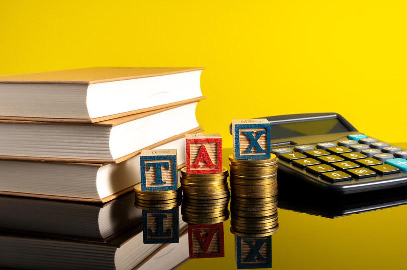 Istnieje szansa na obniżenie VAT na książki w przyszłości /123RF/PICSEL