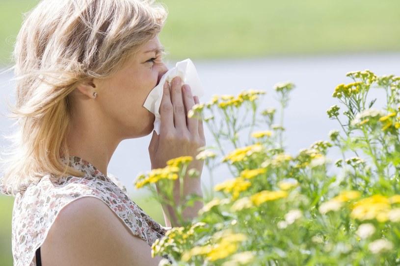 Istnieje wiele skutecznych sposobów na alergię /123RF/PICSEL