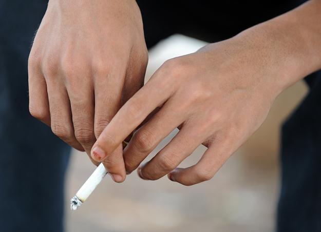 Istotnym problemem dla Polski jest nielegalny obrót wyrobami tytoniowymi /AFP