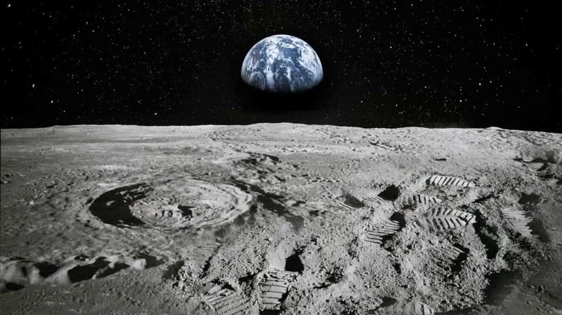 """Izrael zasiał na Księżycu biologiczne życie? """"Te stworzenia przetrwają wszystko"""" /Geekweek"""