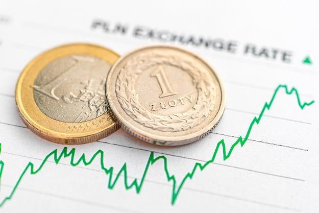 Ja zareagowała polska waluta na decyzję EBC? /©123RF/PICSEL