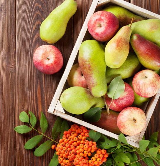 Jabłka i gruszki /©123RF/PICSEL