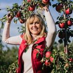 Jabłka: Nasze dobro narodowe. Typowe i nietypowe wykorzystanie tych owoców