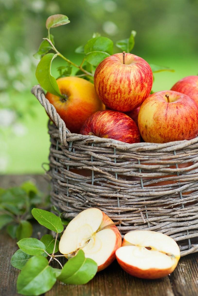 Jabłka są bardzo zdrowe dla dzieci /123RF/PICSEL
