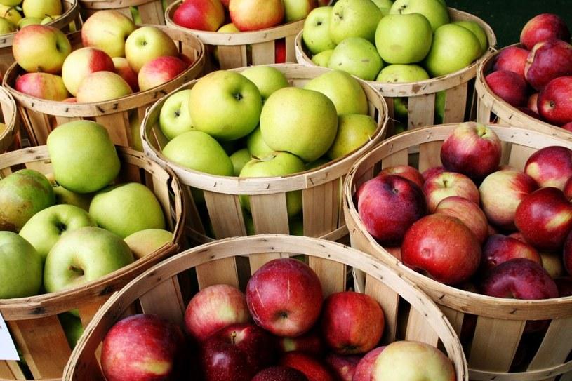 jabłka /© Photogenica
