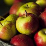Jabłko – owoc uniwersalny