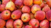 Jabłko – poznaj jego mocne strony