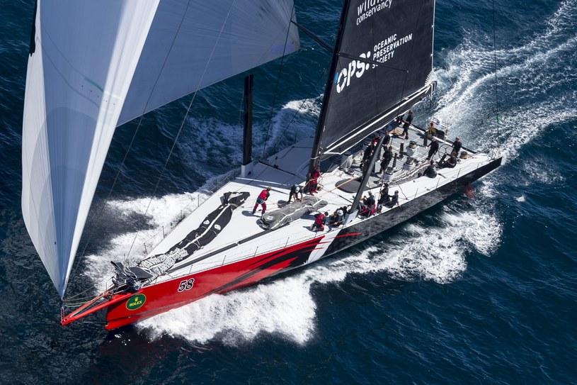 "Jacht ""Wild Oats XI"" /AFP"