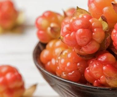 Jagody cloudberry i ich niezwykłe działanie