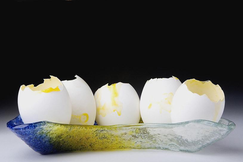 jajka a nawożenie roślin /© Photogenica
