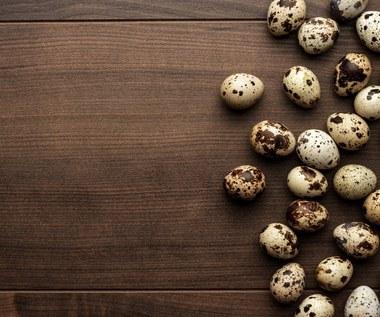 Jajka przepiórcze: Źródło cennych wartości odżywczych