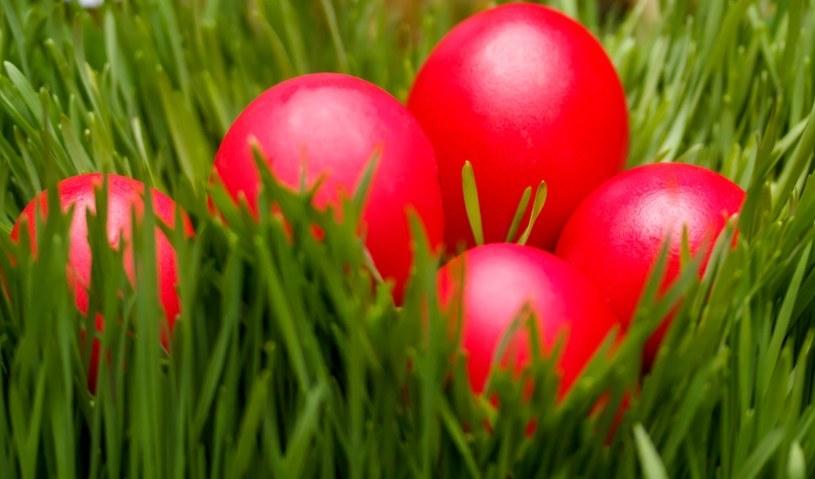Jajka to symbol świąt /©123RF/PICSEL