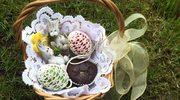 Jajo, palma i woda - wielkanocne symbole życia mają pogańskie korzenie