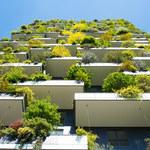 Jak dbać jesienią o rośliny na balkonie