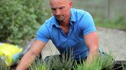 Jak dbać o ogrodowe wrzosowisko, kosodrzewinę, brzozę, runiankę, rodgersję, berberys i klon?