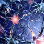 Jak dbać o układ nerwowy?