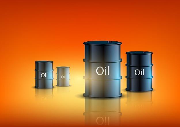 Jak decyzja OPEC wpłynie na ceny paliw? /©123RF/PICSEL