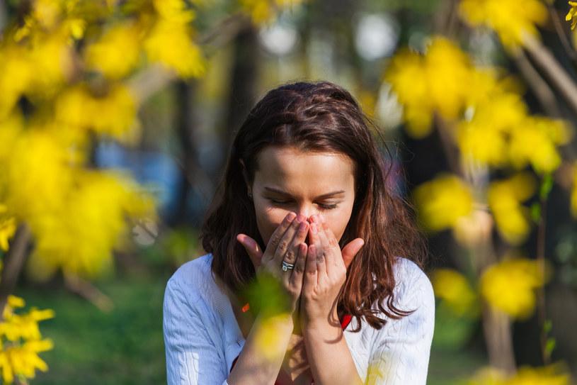 Jak diagnozować i radzić sobie z alergią na pyłki roślin? /materiały prasowe