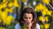 Jak diagnozować i radzić sobie z alergią na pyłki roślin?