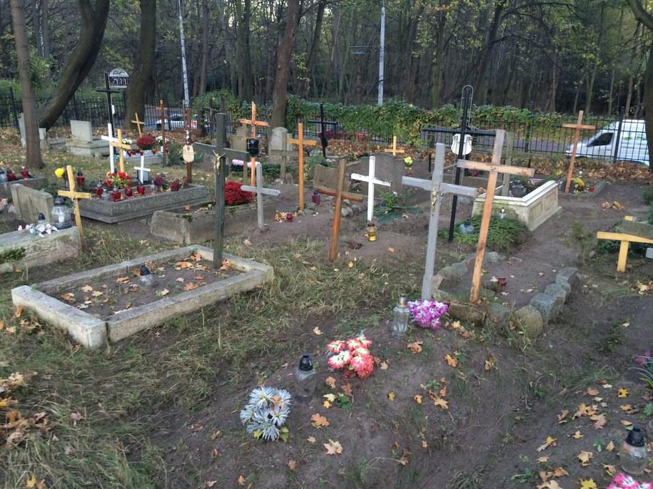 Jak dojechać na cmentarze w Szczecinie /RMF FM