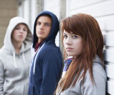 Jak działają gangi młodzieżowe w Polsce?