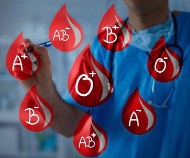 Jak grupa krwi wpływa na naszą osobowość?