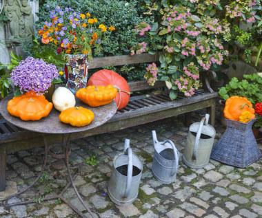 Jak jesienią zaaranżować balkon lub taras?
