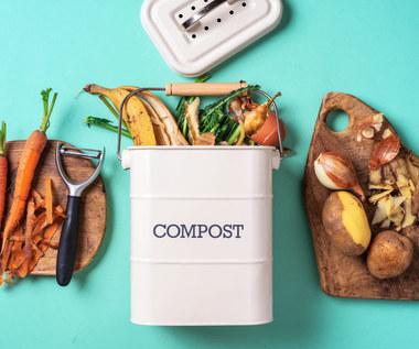 Jak kompostować odpadki organiczne?