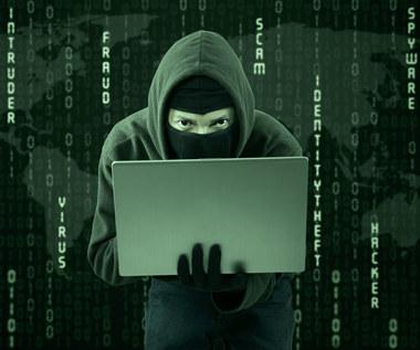 Jak kradnie się miliony w internecie