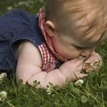 Jak na spacerze chronić maleństwo przed inwazją owadów?