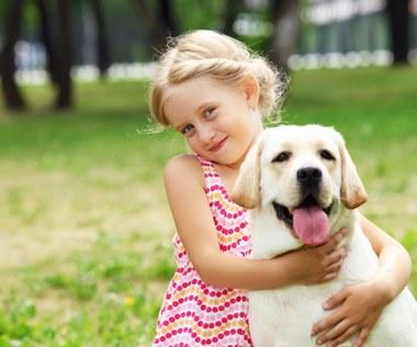 Jak namówić rodziców na zakup psa?