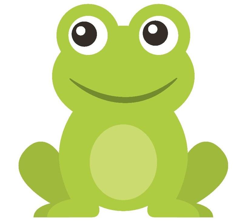 Jak narysować żabę? /©123RF/PICSEL