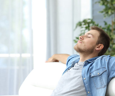 Jak nawilżyć i oczyścić powietrze w mieszkaniu? Skuteczne sposoby