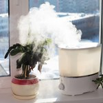 Jak nawilżyć powietrze w mieszkaniu?