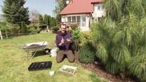 Jak niewielkim kosztem odmienić swój ogród?