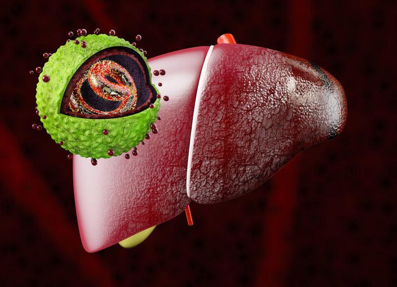 Jak objawiają się choroby wątroby? /©123RF/PICSEL