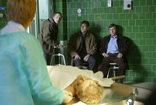 Jak oceniacie polskie seriale kryminalne?