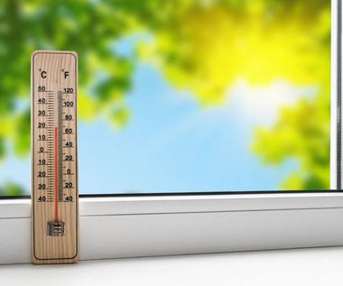 Jak ochłodzić mieszkanie w upalne dni?