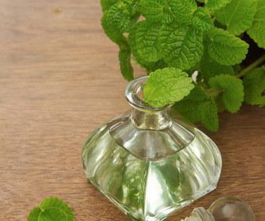 Jak oczyścić płuca przy użyciu olejku miętowego?
