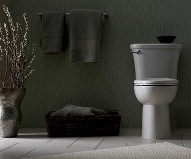 Jak odetkać toaletę zapchaną papierem toaletowym?