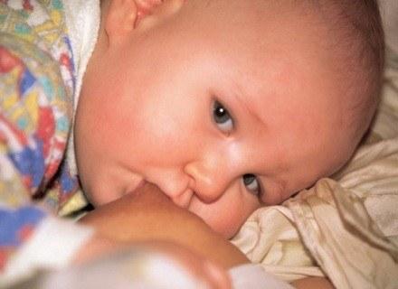 Jak odżywiać niemowlaka? /INTERIA.PL