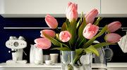 Jak pielęgnować tulipany?